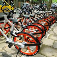 五个月亏损三百万,重庆单车创始人为创业者留下血泪忠告