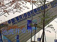 重庆B区自贸园区招商—个人独资企业或公司全部可申请核定征收