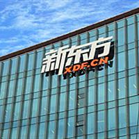 新东方险成家族企业,俞敏洪不为人知的创业往事