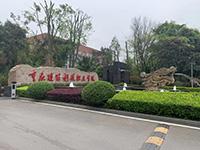 重庆沙坪坝区大学城创业园,托管工位2000元/年,支持银行开户拍照,另有独立办公室出租