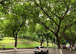 重庆渝中区创业园地址挂靠